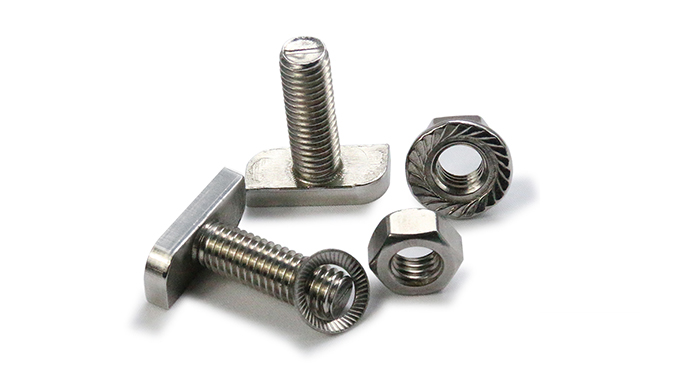 Stainless Steel Fasteners T bolts